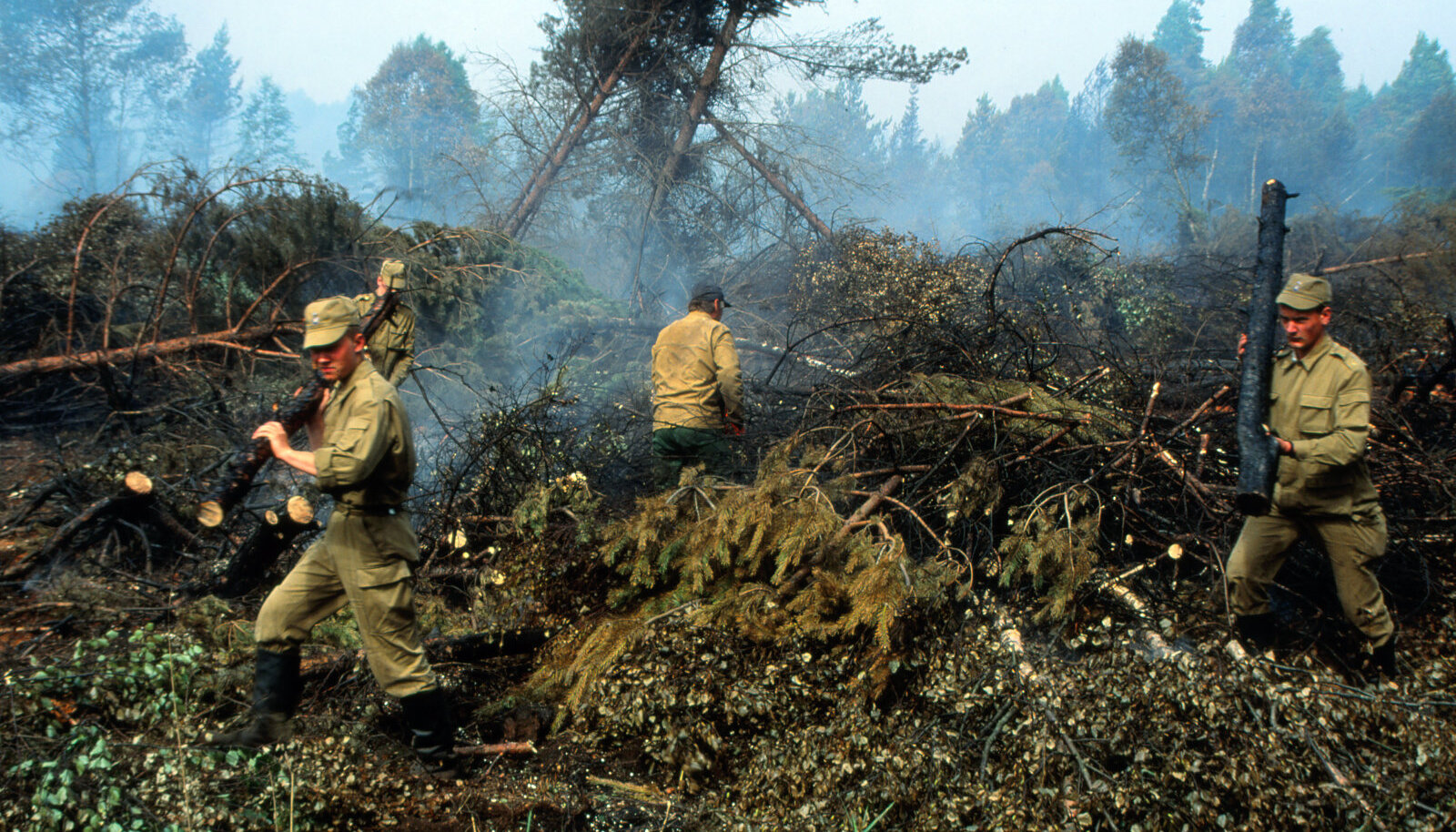 Metsa kustutama tulnud sisekaitserügemendi ajateenijad suunati raietööle. Kuuldavasti olevat ajateenijad solvunud, et neid tule kustutamise asemel metsa langetama pandi.
