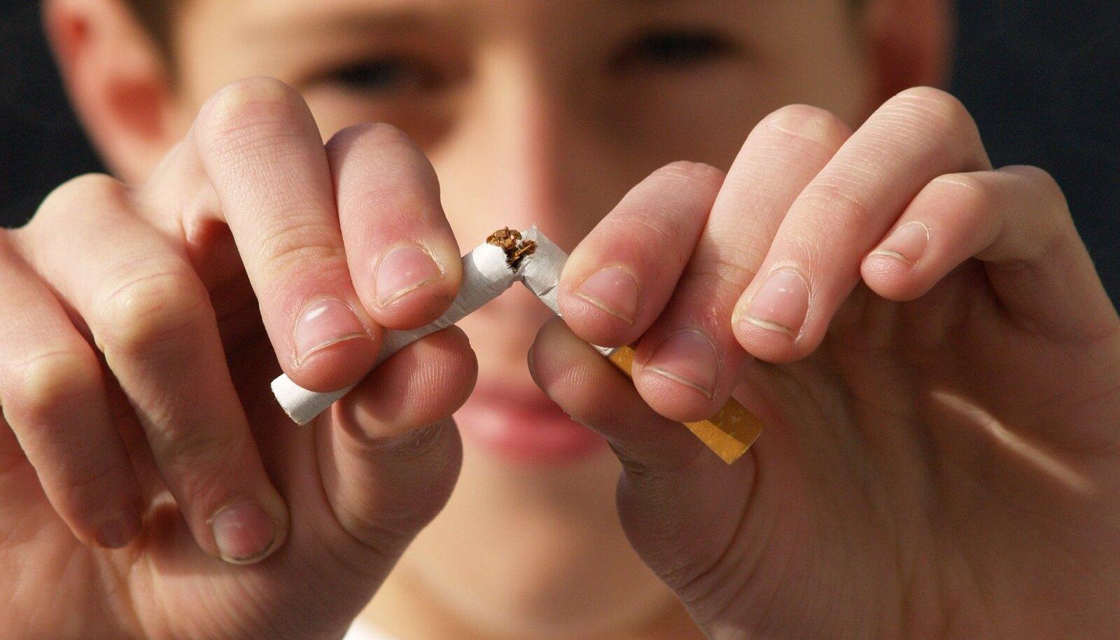 Tänapäevane tubakaepideemia põhineb tehases valmistatud sigarettidel – kaubanduslikult edukal tootel, mis ei ole 75 aastaga peaaegu üldse muutunud.