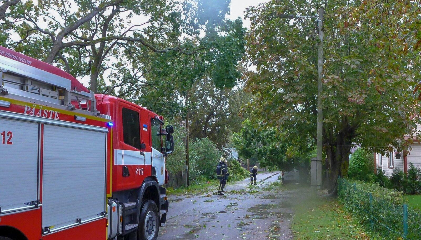 Torm Saaremaal murdis puid ja tõstis veetaset. Sõrves ulatusid tuuleiilid kuni 29 m/s