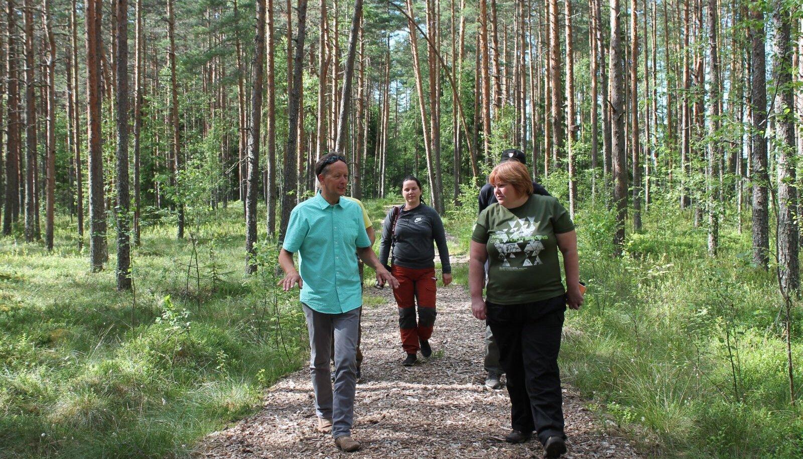 Metsarada Pullijärve puhkekülas, mis on kaetud oma metsast saadud hakkpuiduga. Pimedal ajal on see ka valgustatud.