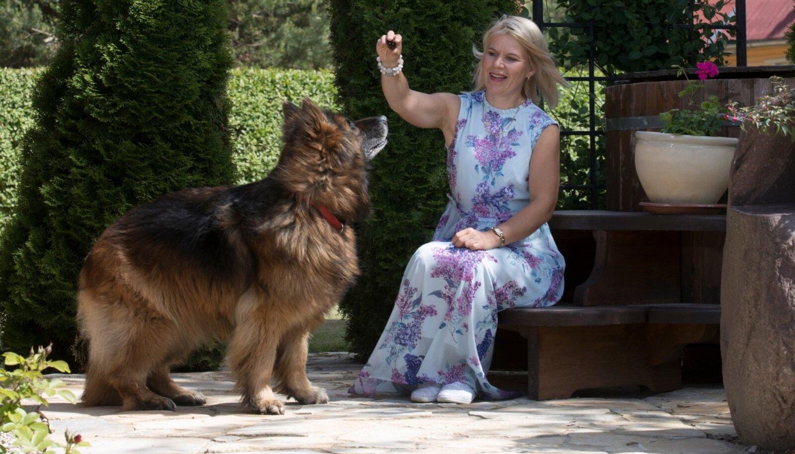 Selles aias muide elab ka koer, kes ei tee haljastusele absoluutselt mingit kahju.