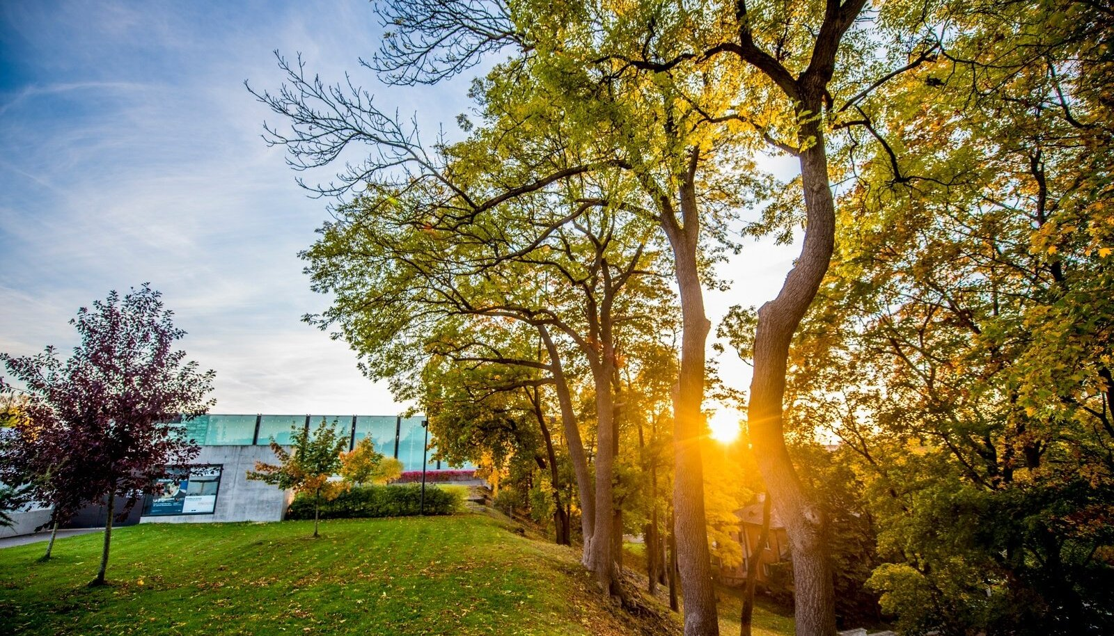 Sügis kadriorus ja päikeseloojand