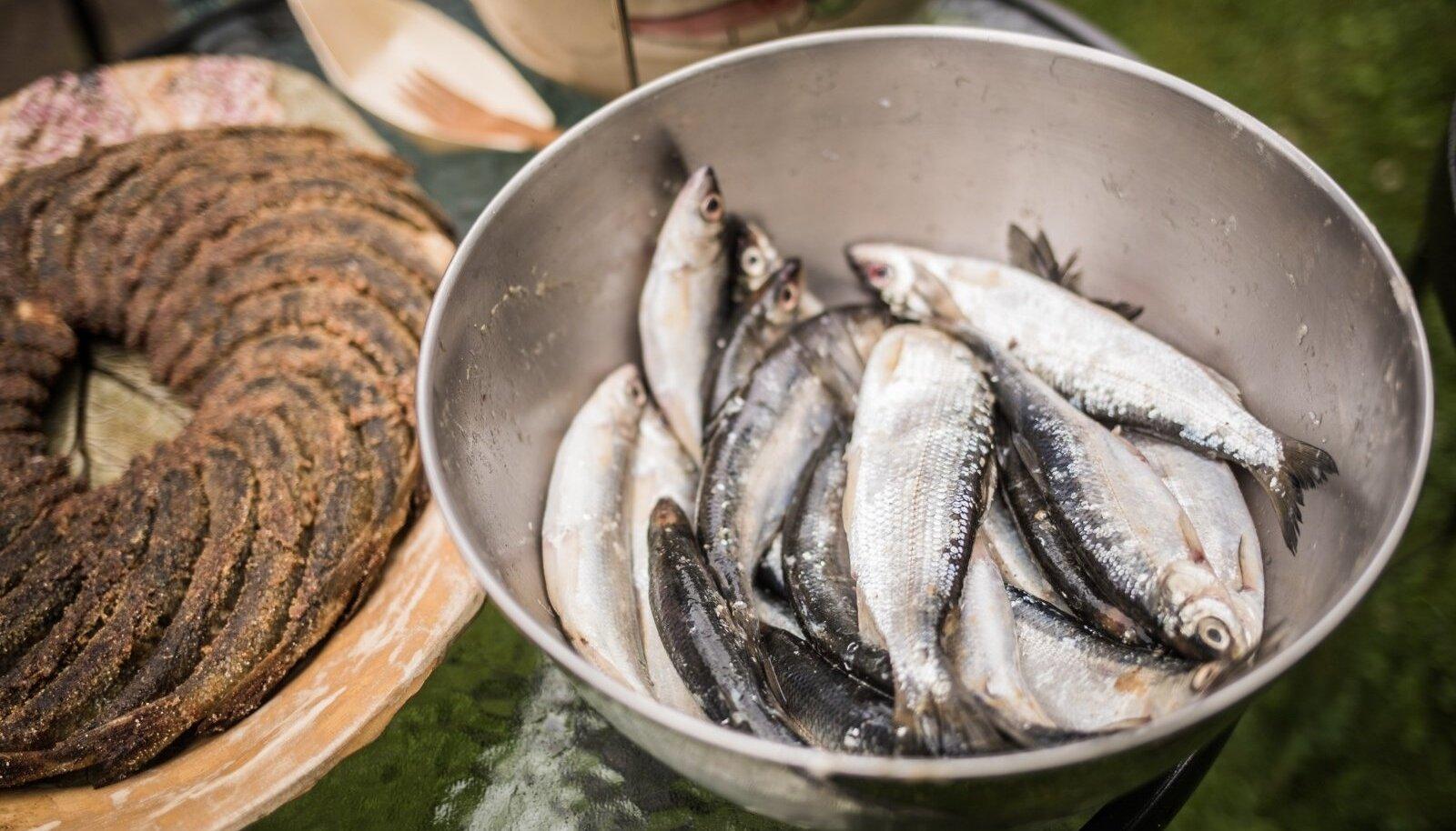 Rääbisepüük Peipsi ja Lämmijärvest lubati alles aastast 2011. Esimesed kuus suve lubati Eesti kaluritel teda püüda kõigest 10–15 tonni, mullu aga oli püügikvoot koguni 400 tonni.
