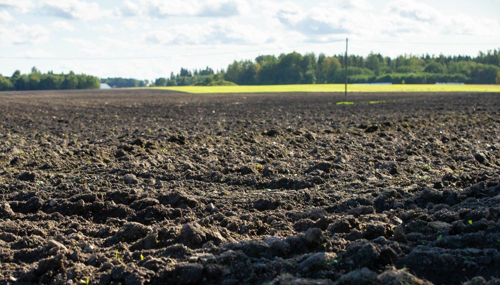 Põllumaa