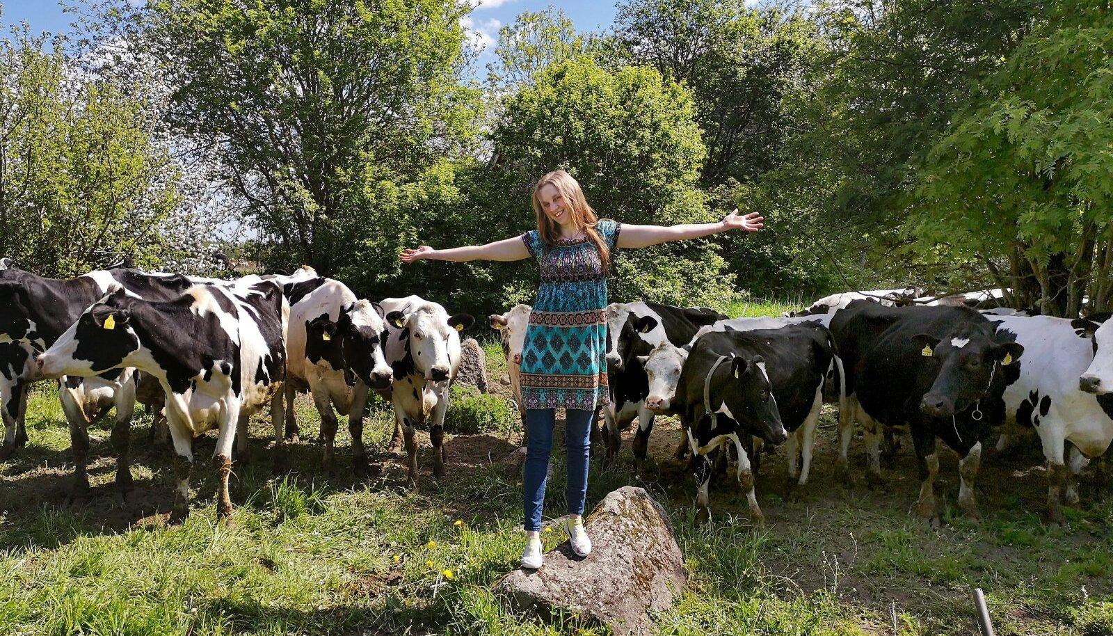 """""""Mina jään ikkagi piimakarja pidama, ei vaheta seda kunagi lihakarja vastu välja,"""" on Hüpandi talu perenaine Krista Tõnuri kindel."""