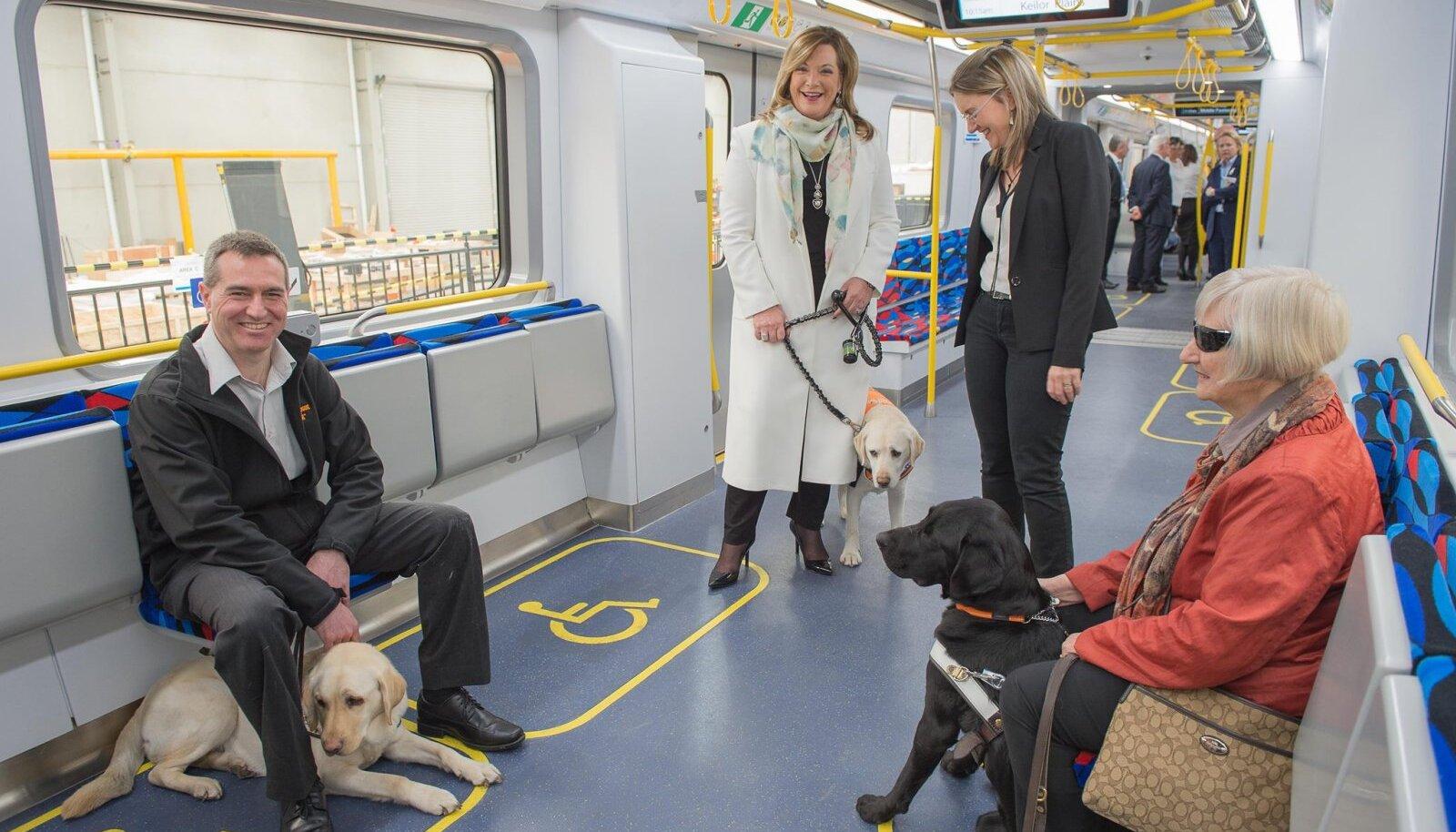 Koerad ühistranpordis