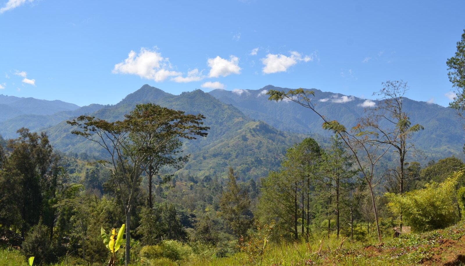 Paapua Uus-Guinea, Okeaania, saareriik, saar