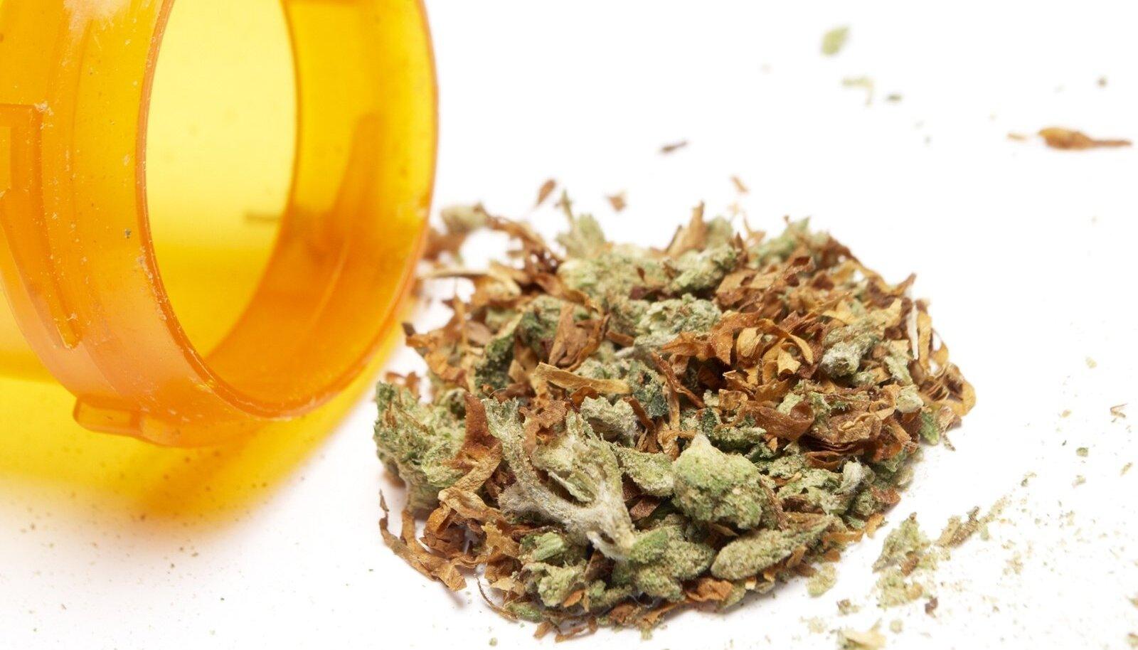 Sel aastal on politsei registreerinud umbes 1850 narkootilise aine tarvitamise juhtumit. Endiselt on kõige levinum uimasti kanep.
