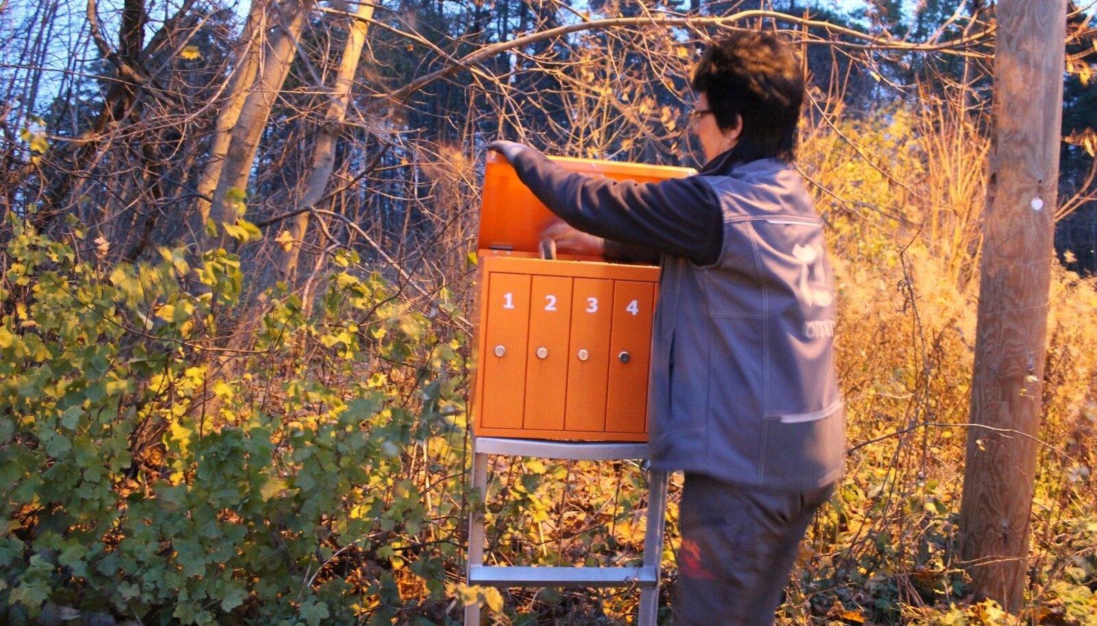 Väikeelamute rajoonis lihtsustab kirjakandja tööd see, kui postkastid on kobaras ühes kohas.