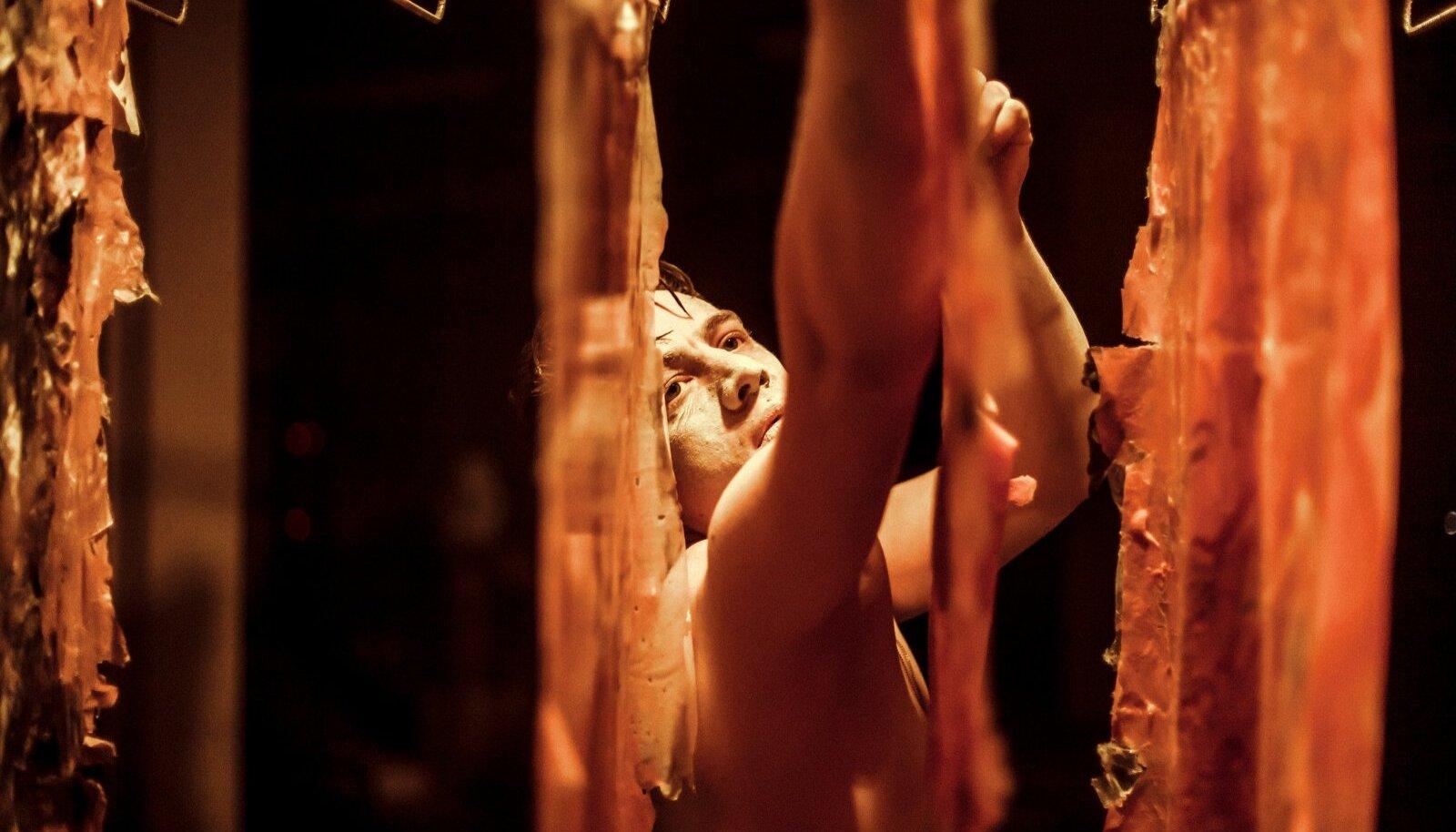 """Jarmo Reha riputab etenduses """"WhiteWash"""" pesunööridele nahku. Sest puhtal lihal pole värvi ega indentiteeti?"""
