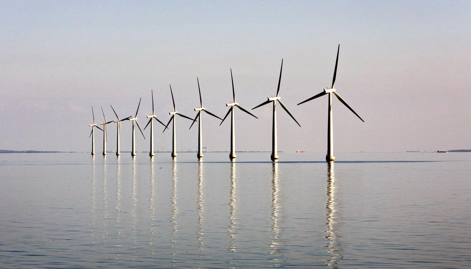 Eestil on ulatuslik tuuleenergia potentsiaal ja võrreldes paljude teiste riikidega saaksime seda kulutõhusamalt kasutusele võtta ning kujundada see oluliseks ekspordiartikliks.