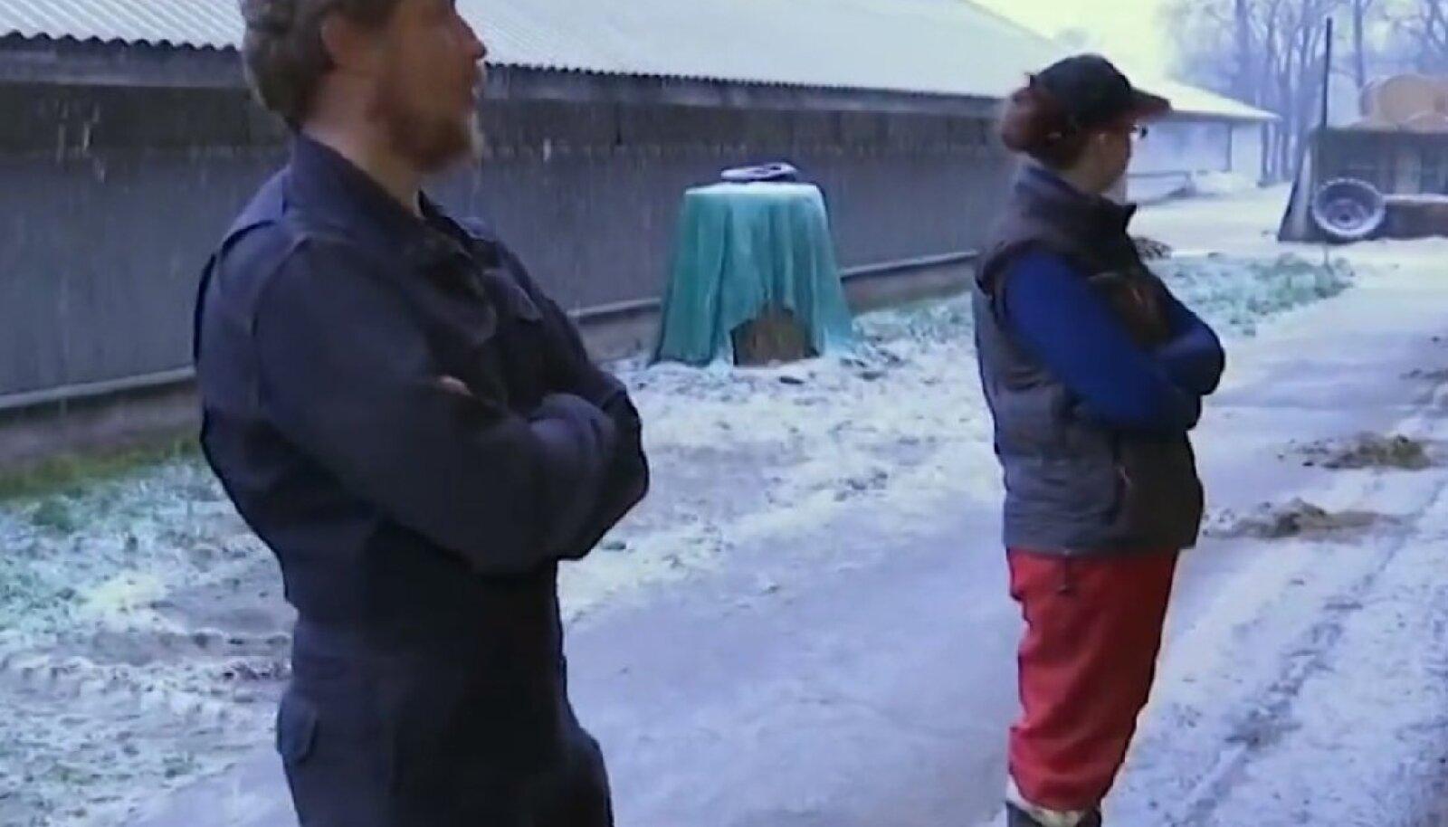 Risti Agro töötajad Veiko Taalkis ja Liina Eilmann peavad ka pühade ajal olema töövalves.