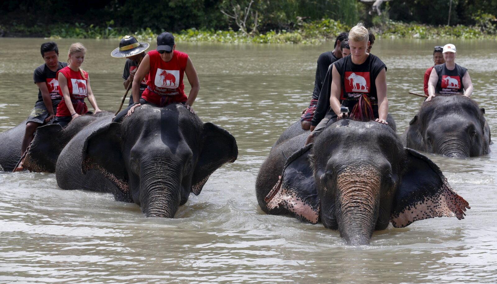 Vabatahtlikud viivad elevantide varjupaiga loomi suplema