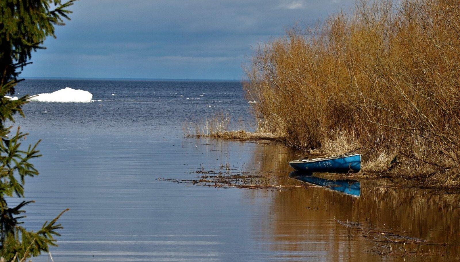 Peipsi järv