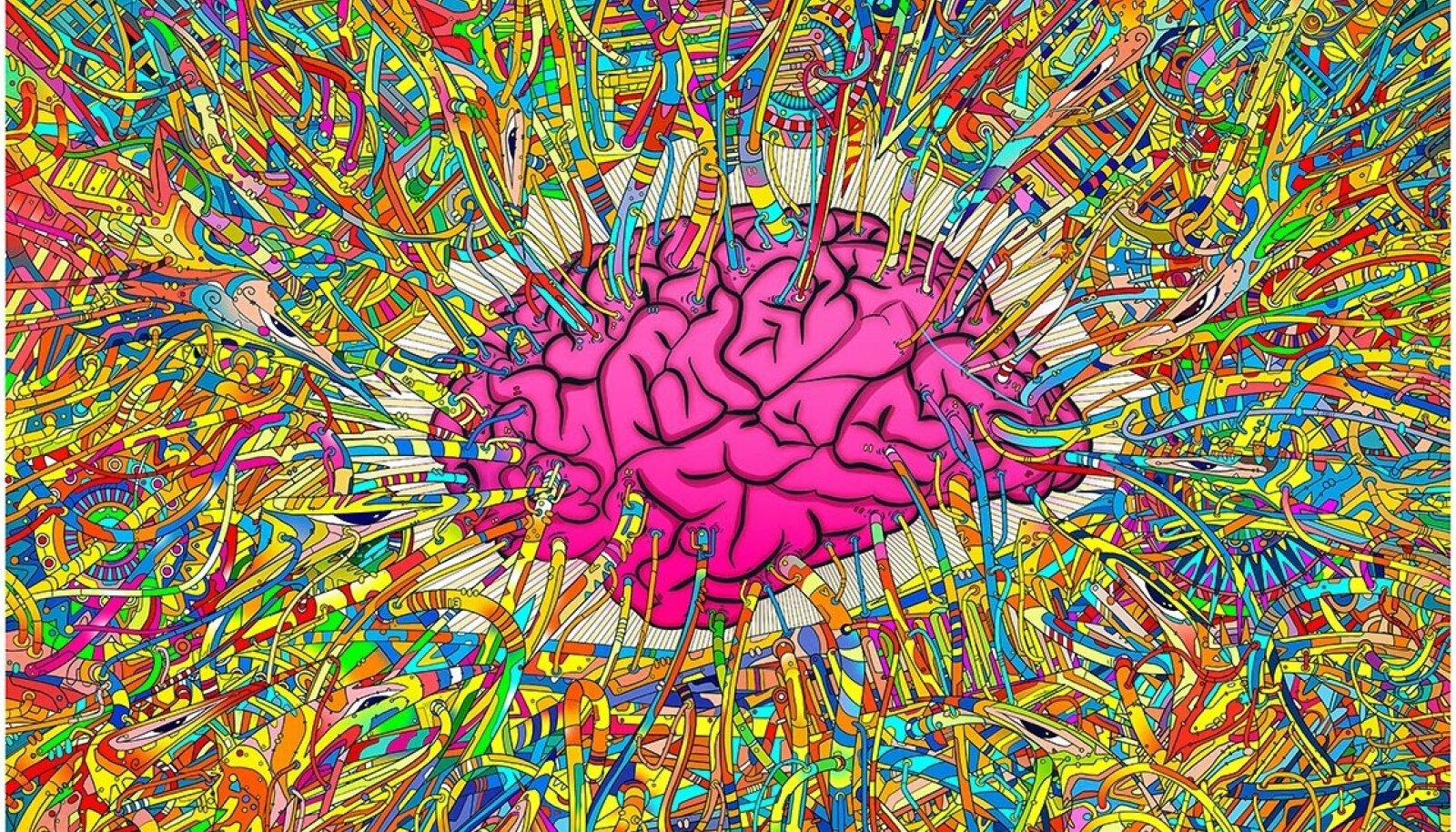 Psühhedeelse aju pildi autor on Matei Apostolescu