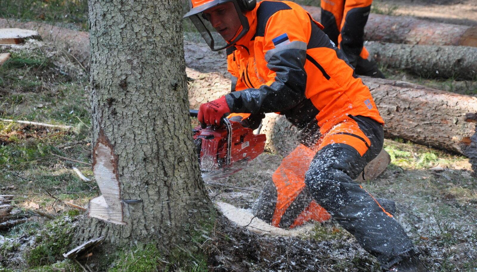 Kuigi metsatöö käib tänapäeval peamiselt masinatega, on tulevastel metsameestel vaja omandada ka käsitsitöö oskused.