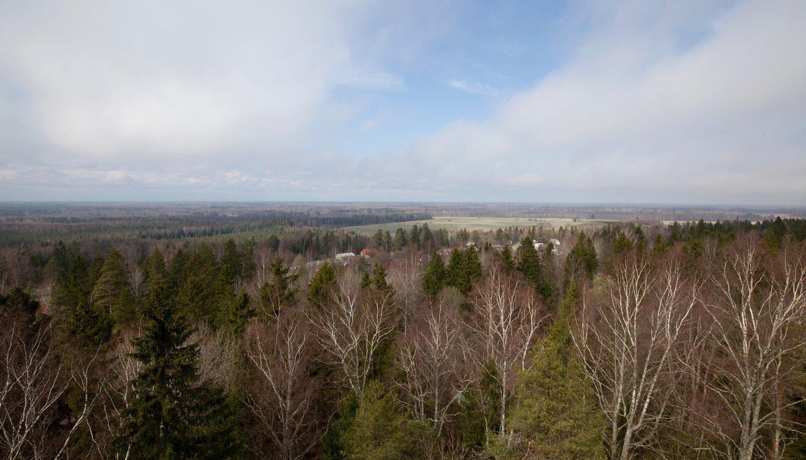 Alutaguse rahvuspark moodustati 2018. aastal 11 loodus- ja maastikukaitsealast.