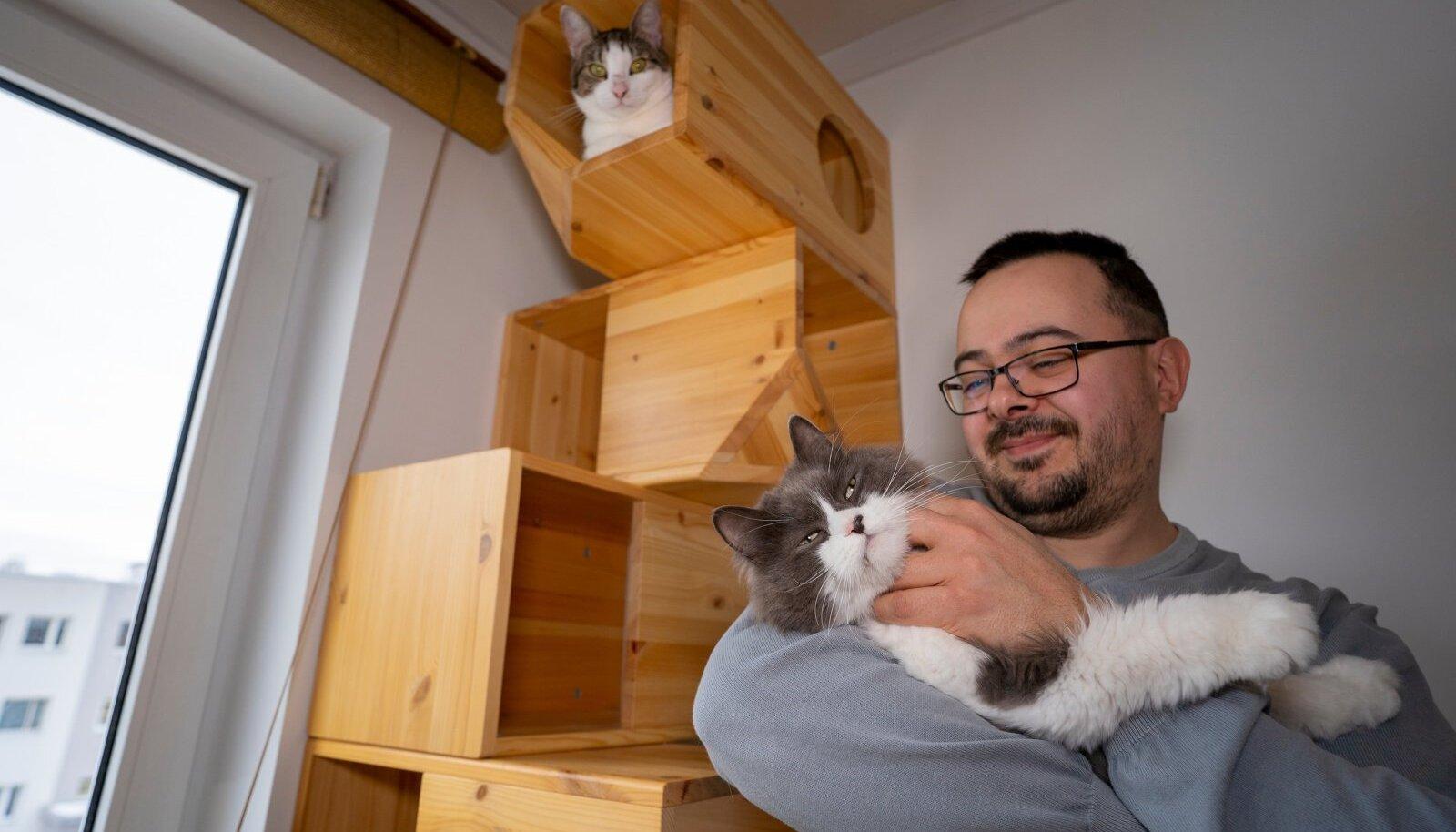 Haapsalus elav Ilshat Garipov valmistab kassidele moodulmaju ja müüb neid kõikjale maailma. Ta teab täpselt, milline maja on kassile hea, sest kasse on tal neli. Üks tuli kaasa Peterburist, teised on kohalikud, kes päästetud varjupaigast.