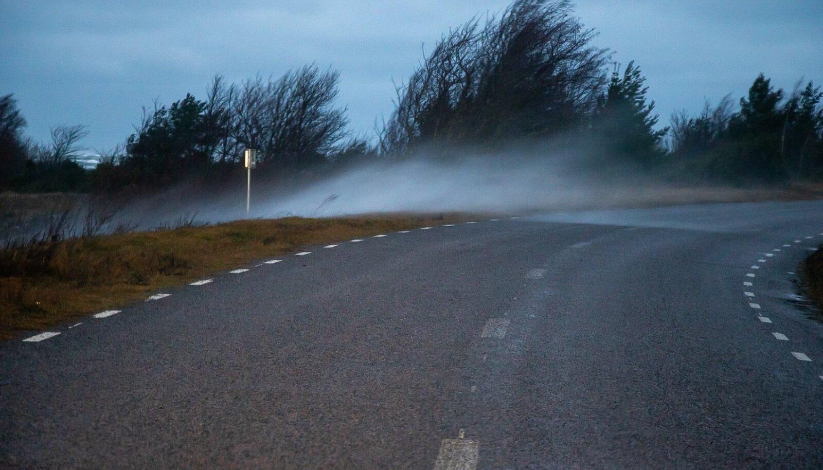 Torm Saaremaal, detsember 2019Mahalangenud puuoksad, tuule kiirus Sõrves 28,8 m/s, murdunud puud teel.