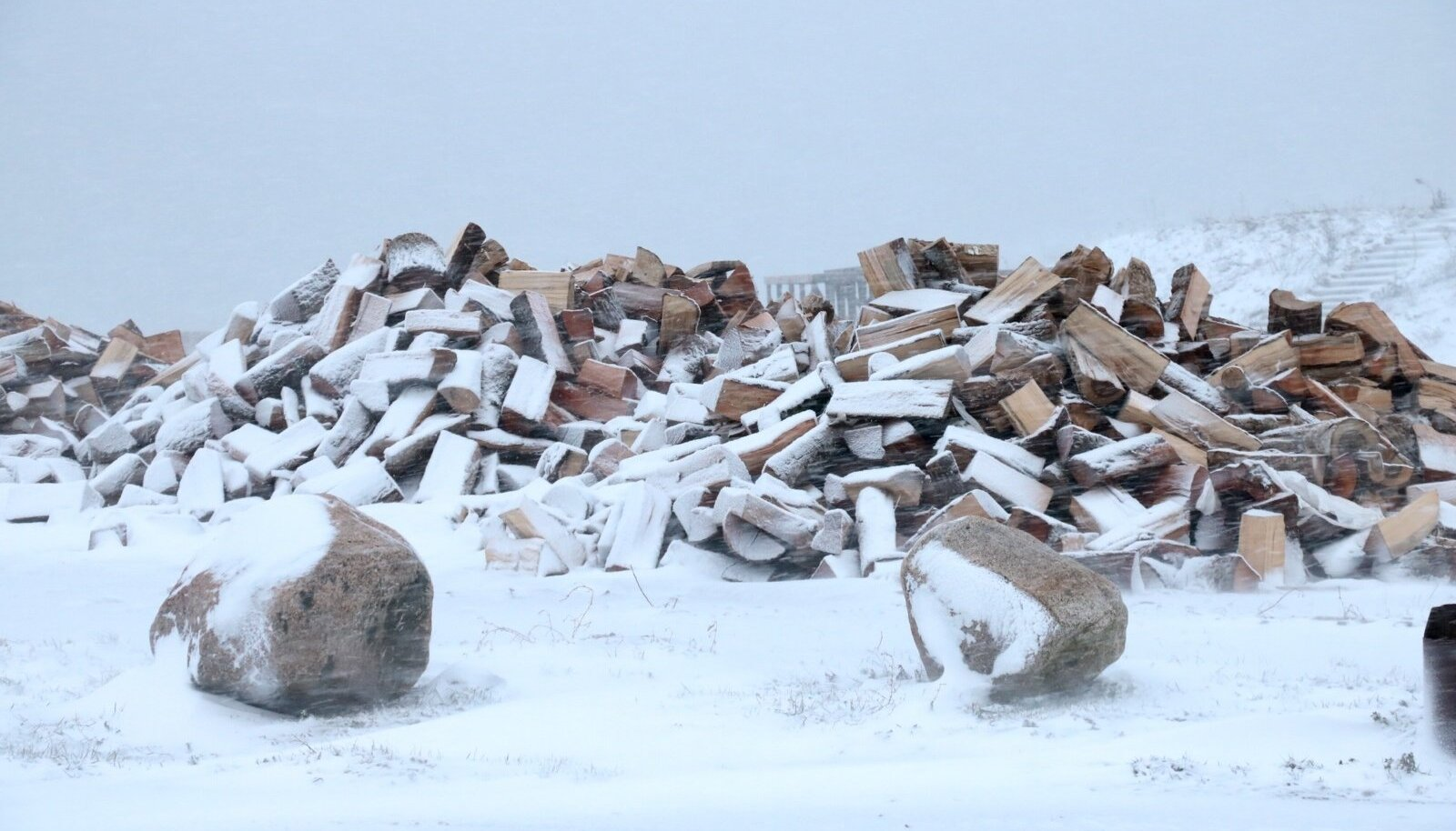 Torm Saaremaal 2 jaanuar 2019, murdunud puud, lumetuisk