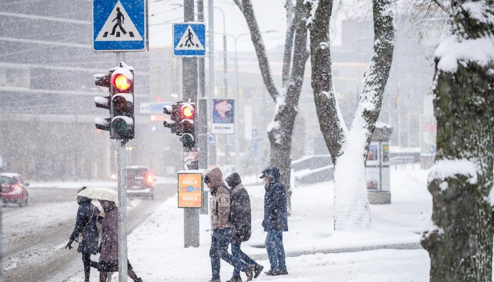 Lumi Tallinnas 2017. aasta oktoobris.
