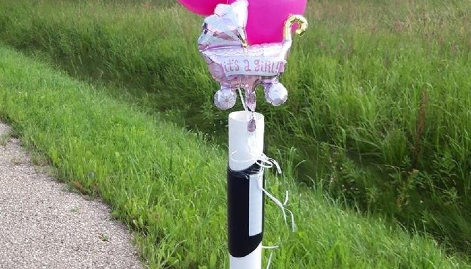 8. juulil tuli ilmale beebi teel Valgast Tartusse. Peale sünnitust pandi väikese tüdruku sünnikohale õhupallid