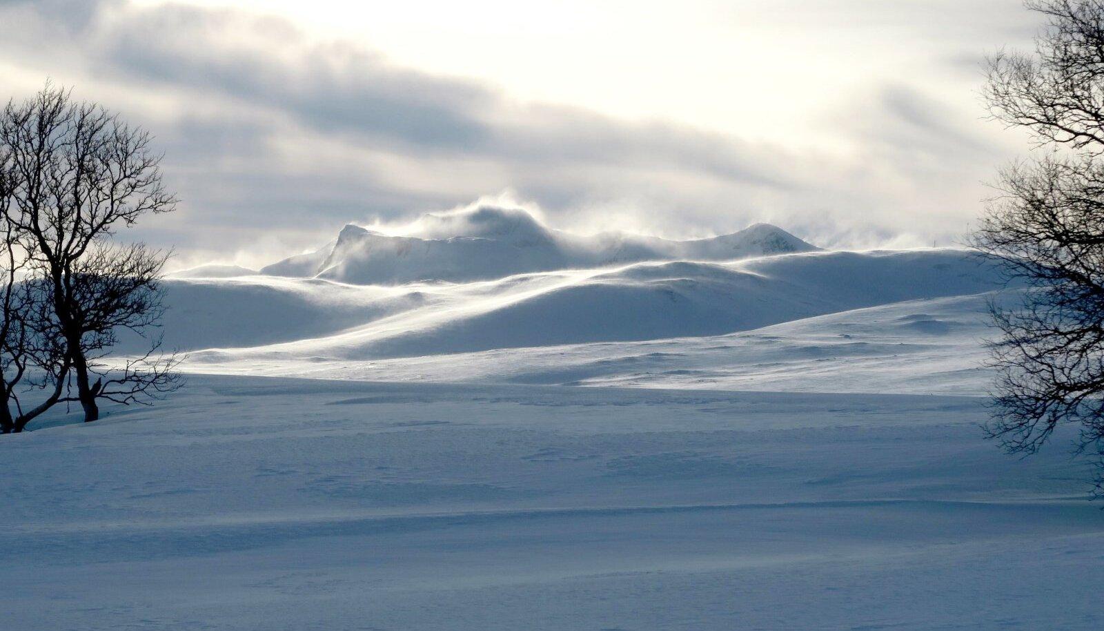Puudega jätame hüvasti juba esimesel päeval, ees ootab puhas valge lumekõrb.