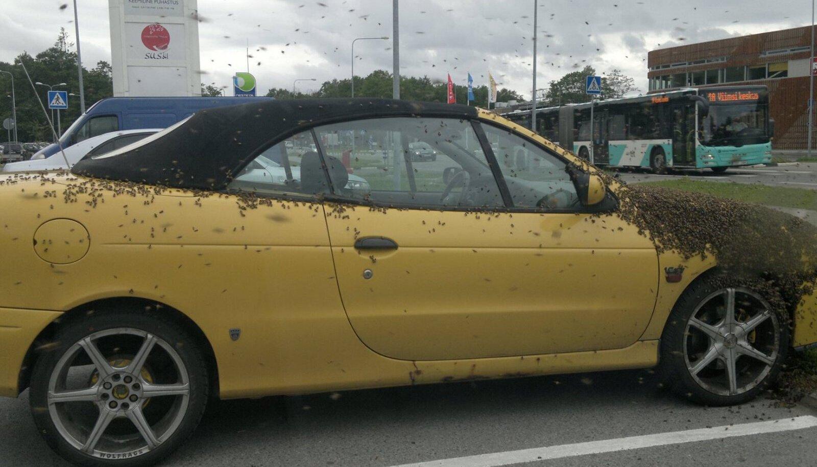 Mesilased vallutasid meekarva auto