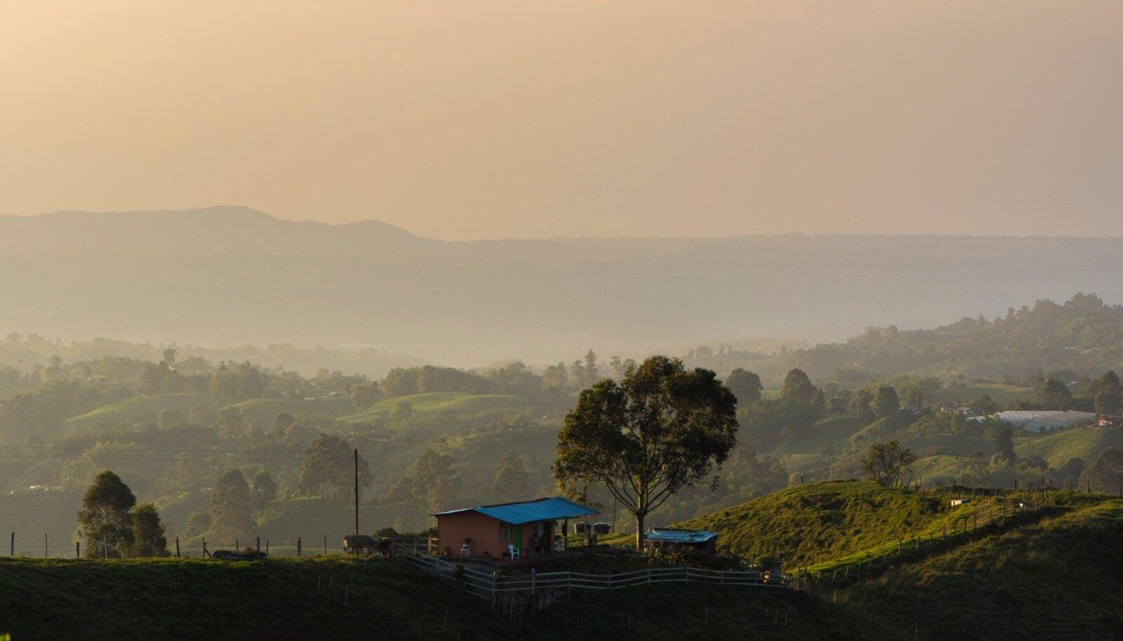 Colombia kuulsaim kohvipiirkond pakub lisaks heale kohvile maalilisi vaateid ja matkaradu ning aasta ringi umbes 24 soojakraadi juures püsivat õhutemperatuuri.
