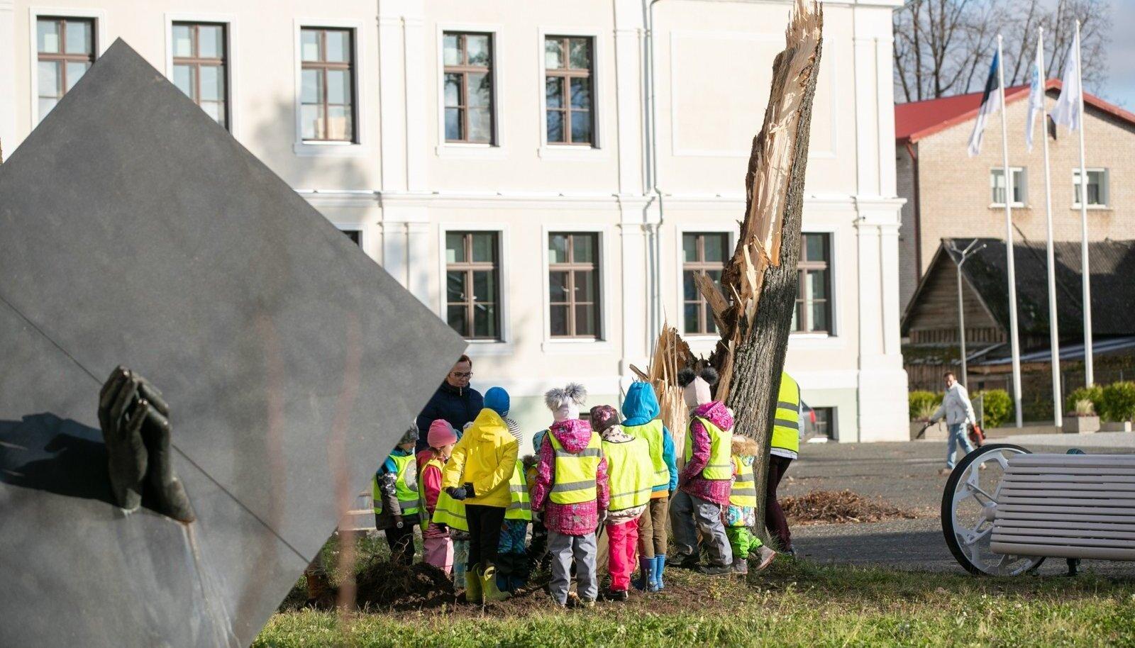 Oktoobritorm Lõuna-Eestis jättis elektrita 65 000 majapidamist, mobiil- ja andmeside kadus 20 minutiga, tanklatest ei saanud kütust kätte, Võru linn jäi veeta ning ka kanalisatsioon ei töötanud, koolid ja lasteaiad jäid päevadeks suletuks. Tormis murdunud puude tõttu oli lisaks elektrile häiritud ka auto- ja rongiliiklus, purunesid mitmed hooned.