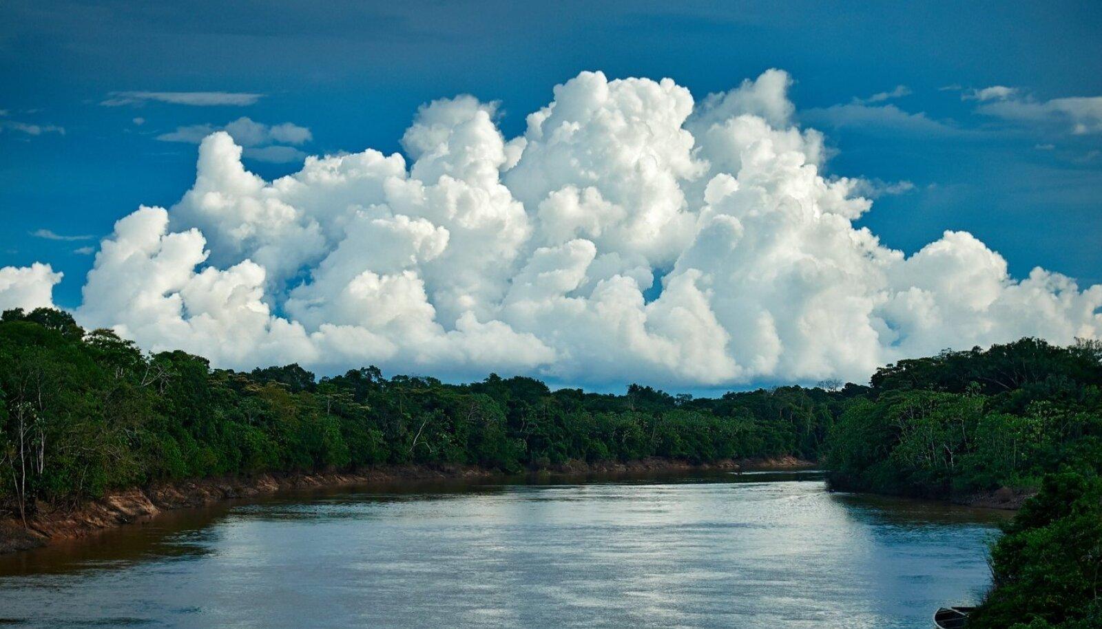 """Minu pildikomplekt """"Metsast linna"""" uurib Amazonase vihmametsa inimeste pidevat linnastumisprotsessi. Jõgi on teekond, mille lõpus ootavad elektriühendus, värvilised riided ja magusad joogid. Ning mis kõige tähtsam -  lootus paremale elule. Reaalsus on aga üks kummaline nõiaring, kus metsast saabub inimesi aina juurde, aga linnas pole neil tegelikult midagi peale hakata.Nii kasvavad linnade ümber hiiglaslikud isetekkelised linnaosad, mis on veider düsfunktsionaalne sümbioos linnast ja metsast. Aga unistus jääb."""