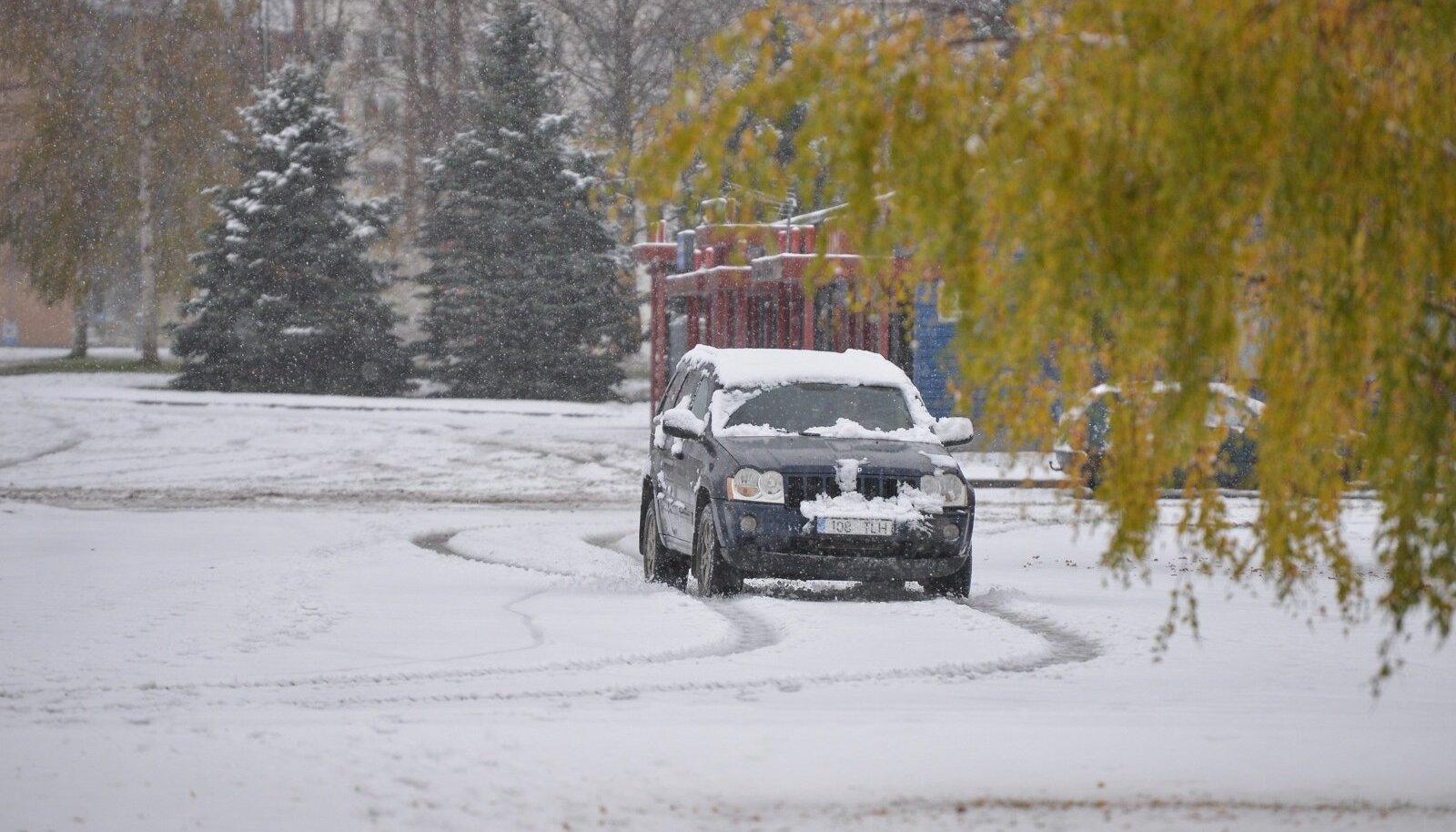 Esimene lumi Viljandis