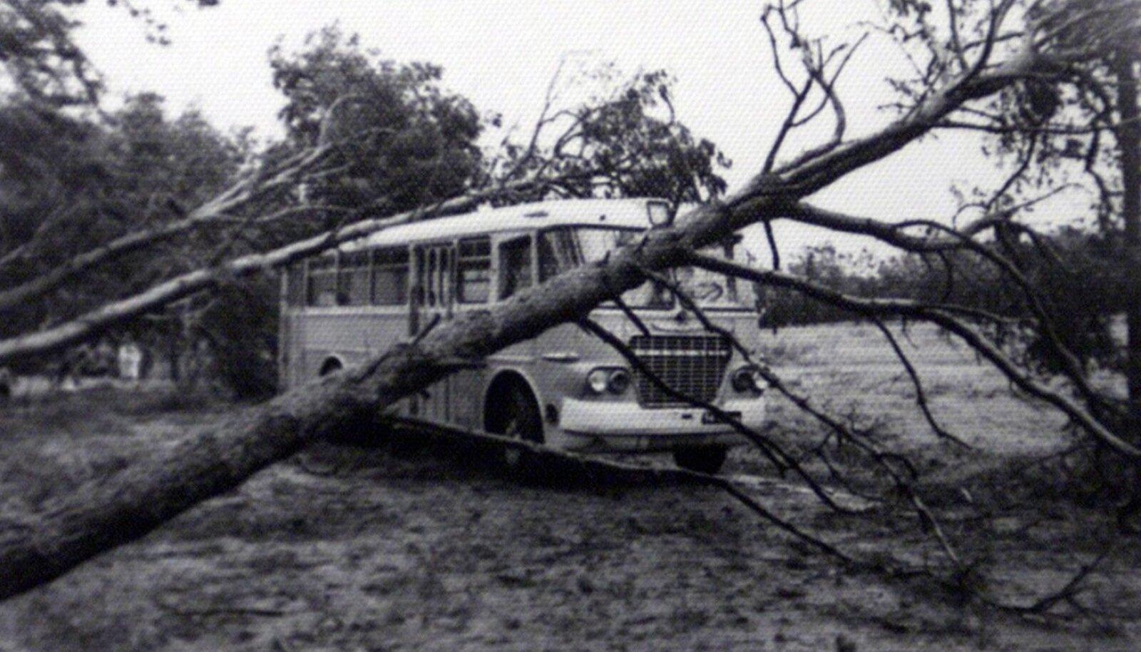 Torm aastal 1967.