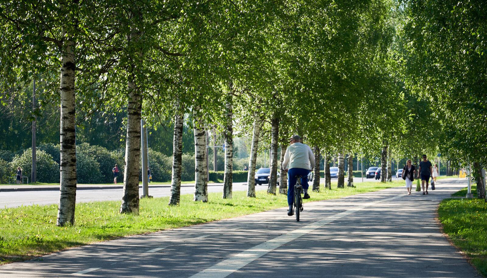 Пешеходно-велосипедные дорожки 2014-2020