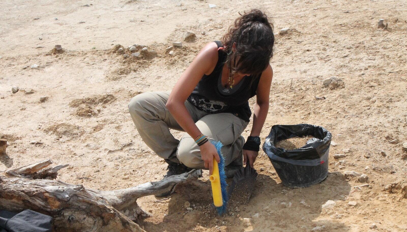 Arheoloog tööhoos (foto: Wikimedia Commons / Suna no onna)