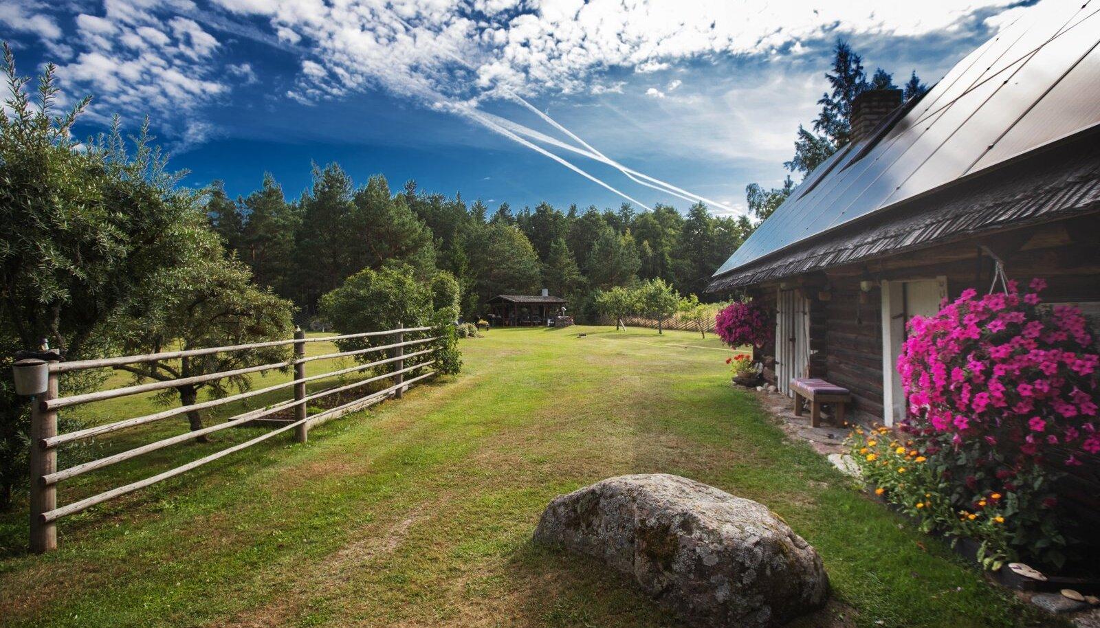 Aidakatuse üht külge katavad päikesepaneelid, mis toodavad suvel kogu talus vajamineva elektri ja jääb veel ülegi.
