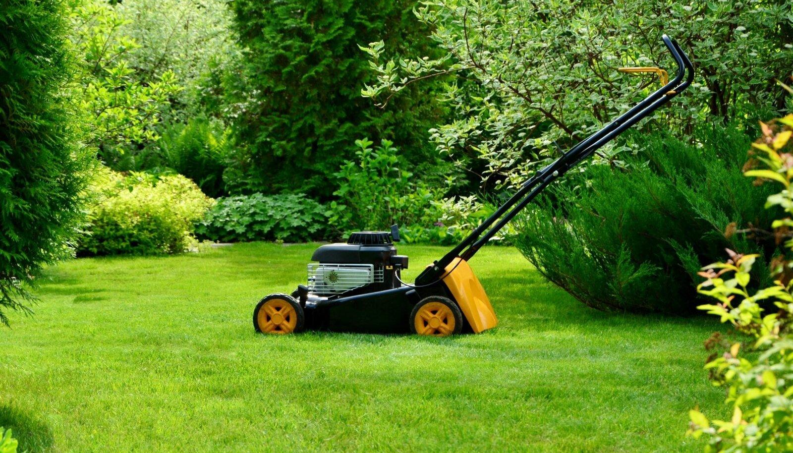 Hea manööverdusvõimega muruniiduk on parim abiline väikesesse, paljude peenardega aeda.