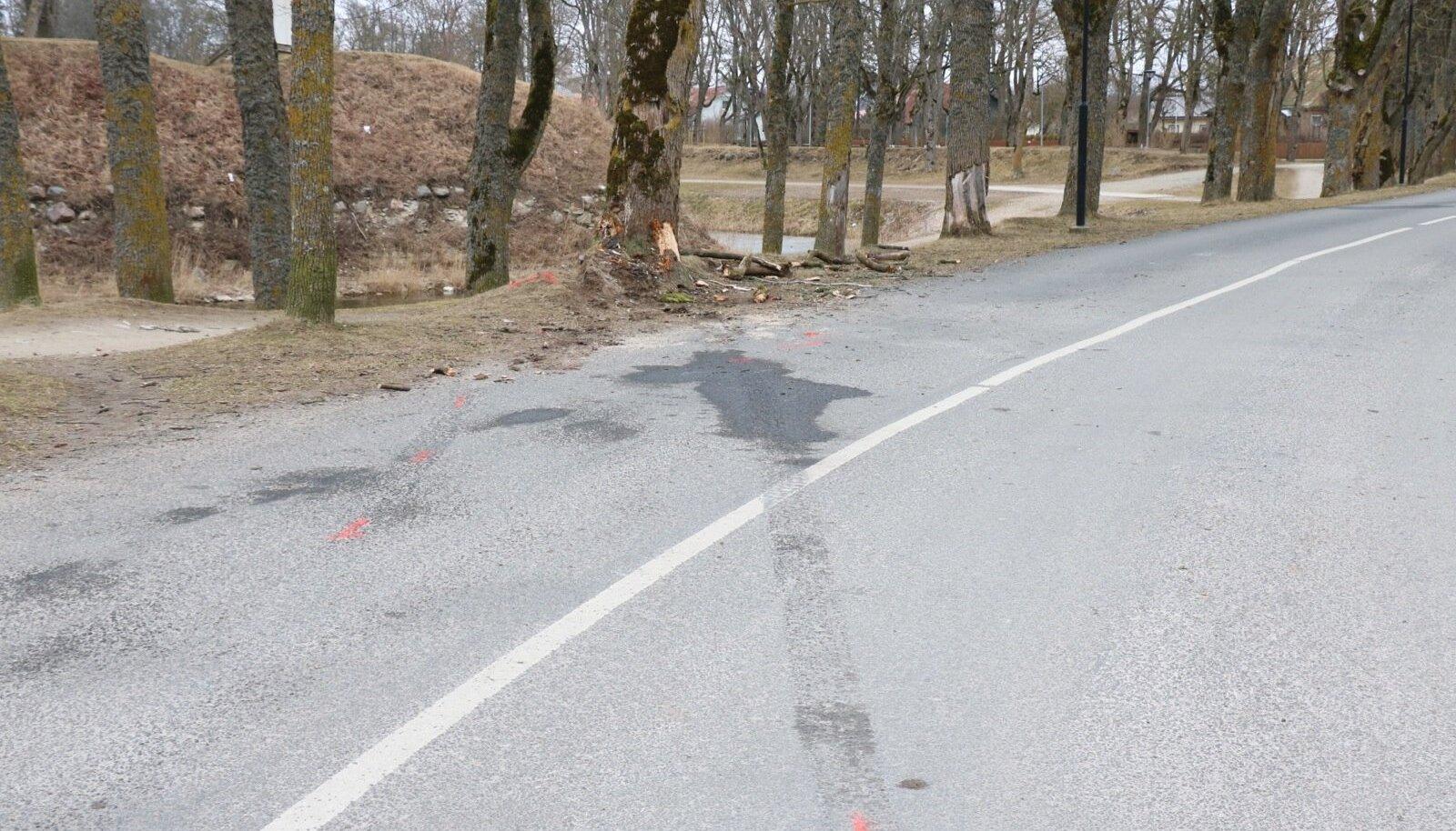 Liiklusõnnetus Kalda puiesteel, bmw juht sõitis vastu puud, kaasreisija viidi Tallinna kopteriga, hommikul avariikoht