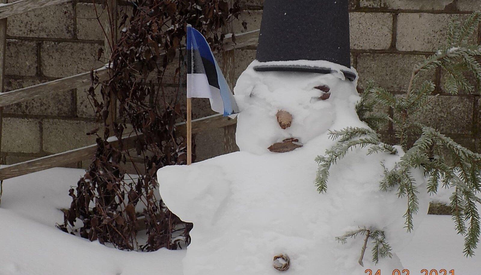 Narva Eesti Selts tervitas vabariigi aastapäeva lumememmega.
