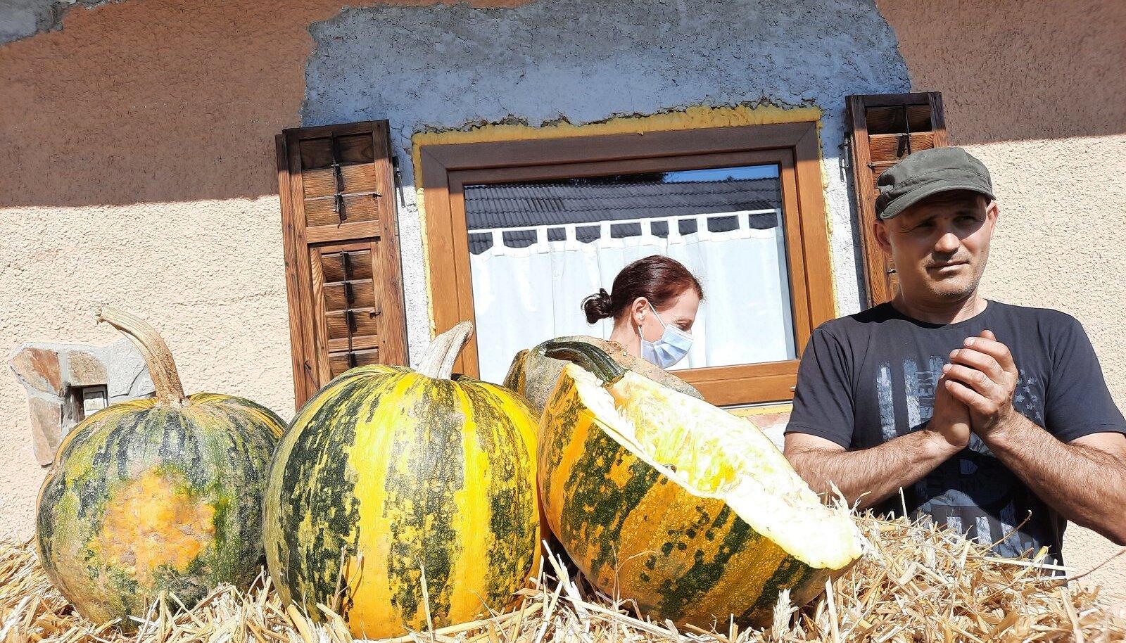 Hergani talu teeb kõrvitsaseemneõli, tegemisi tutvustab peremees Dušan Kos.