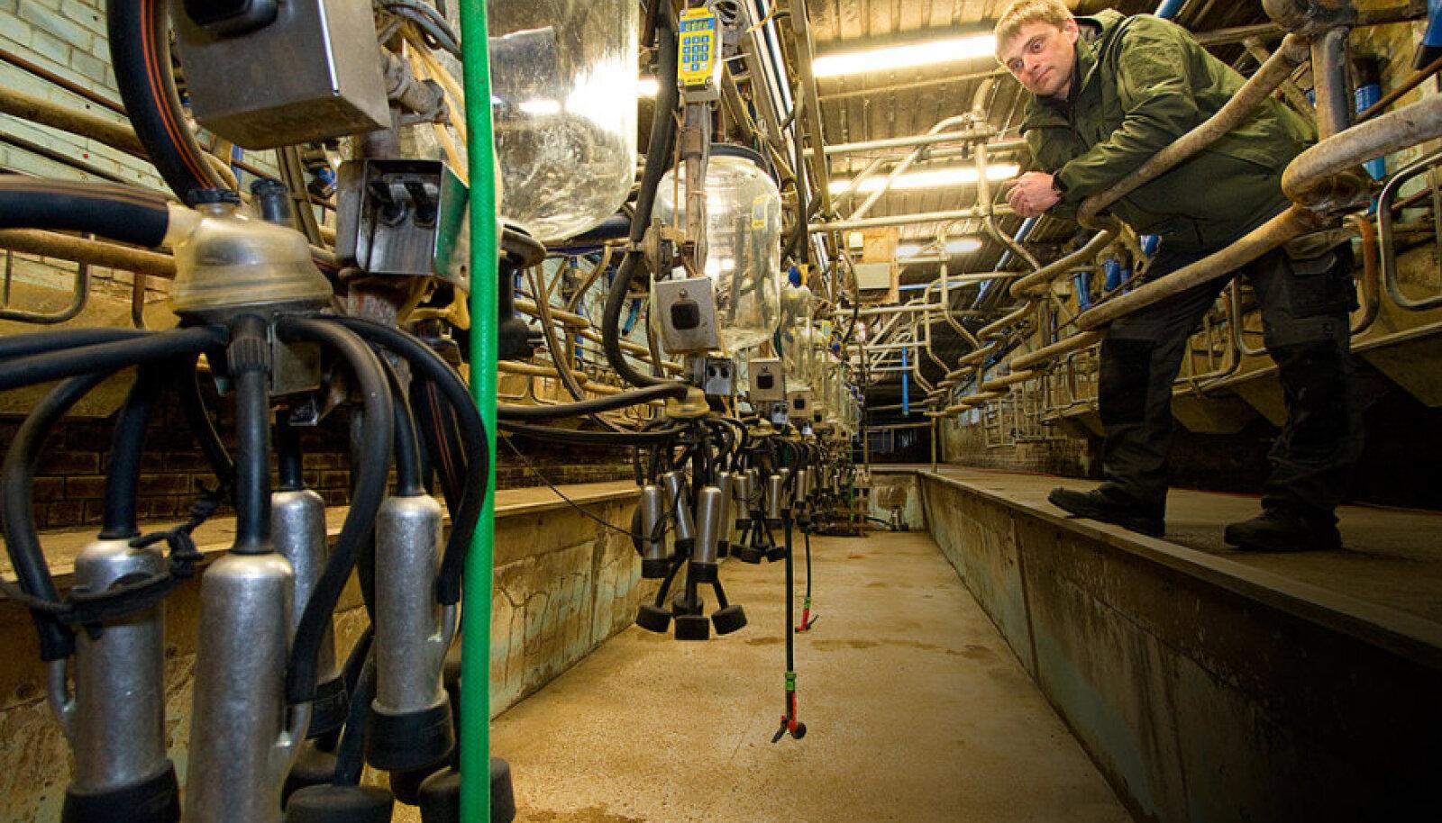 OÜ Abaja Farm  juhataja Kalle Adler lõpetas piimatoot- mise, kuna vana lauda ja lüpsi- süsteemi asendamine kaasaegsega on  praeguse piima- hinna tõttu võimatu.