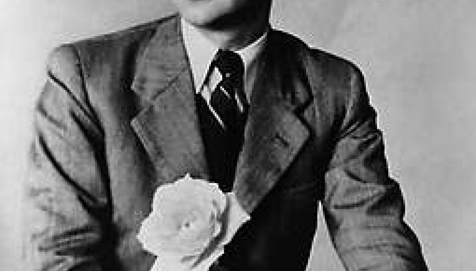 KARL RISTIKIVI: Depressiivse vaimuga suurkirjanik, kes jäi maailmale üpris tundmatuks. repro