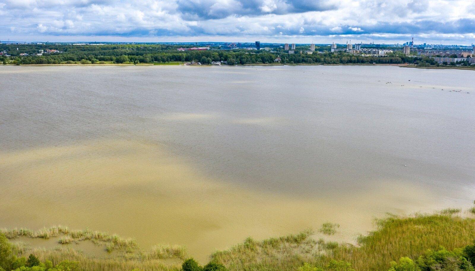 Harku järv drooniga 6.06.2020