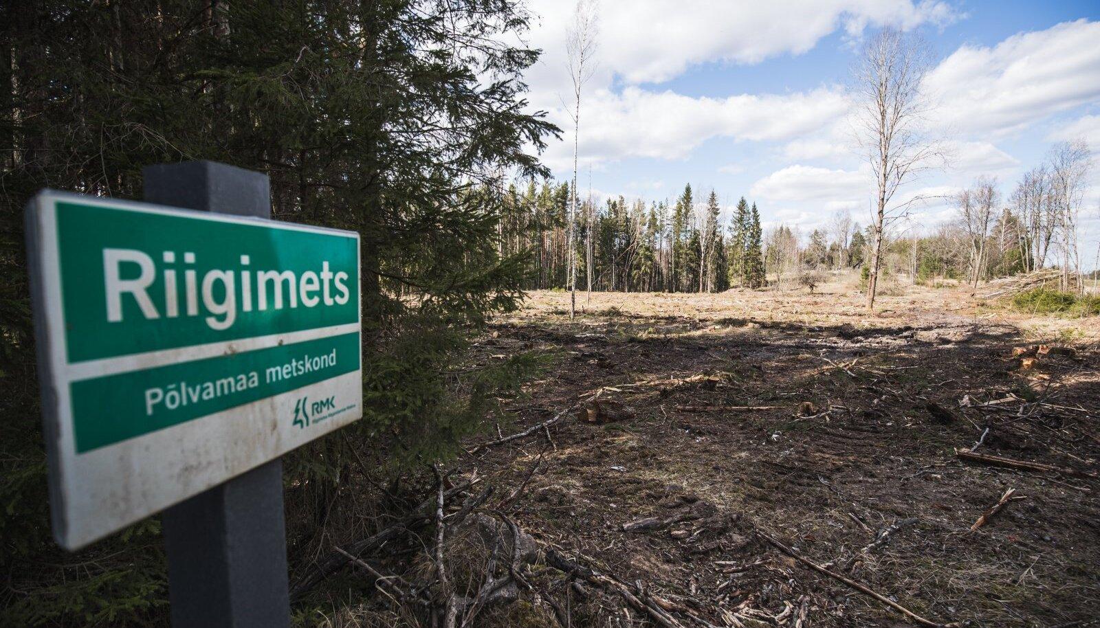 Looduskaitsjate hinnangul oligi arengukava juhtkogu väljasuretamine ministeeriumi eesmärk, et metsade majandamine saaks endisel viisil jätkuda.
