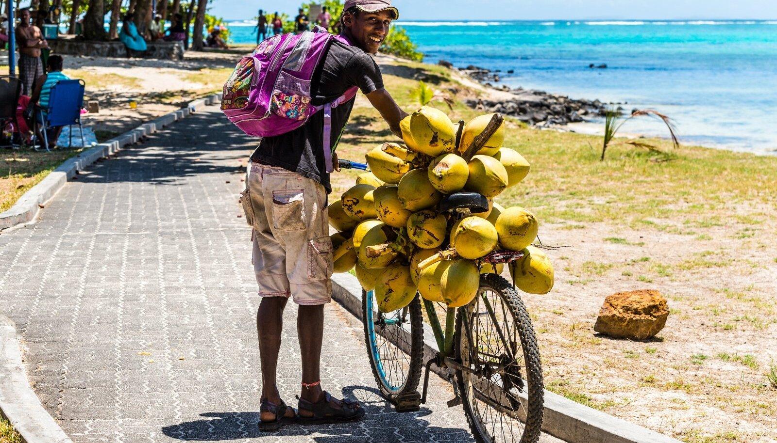 Rattur kogub maaliliste vaadete taustal kookospähkleid.