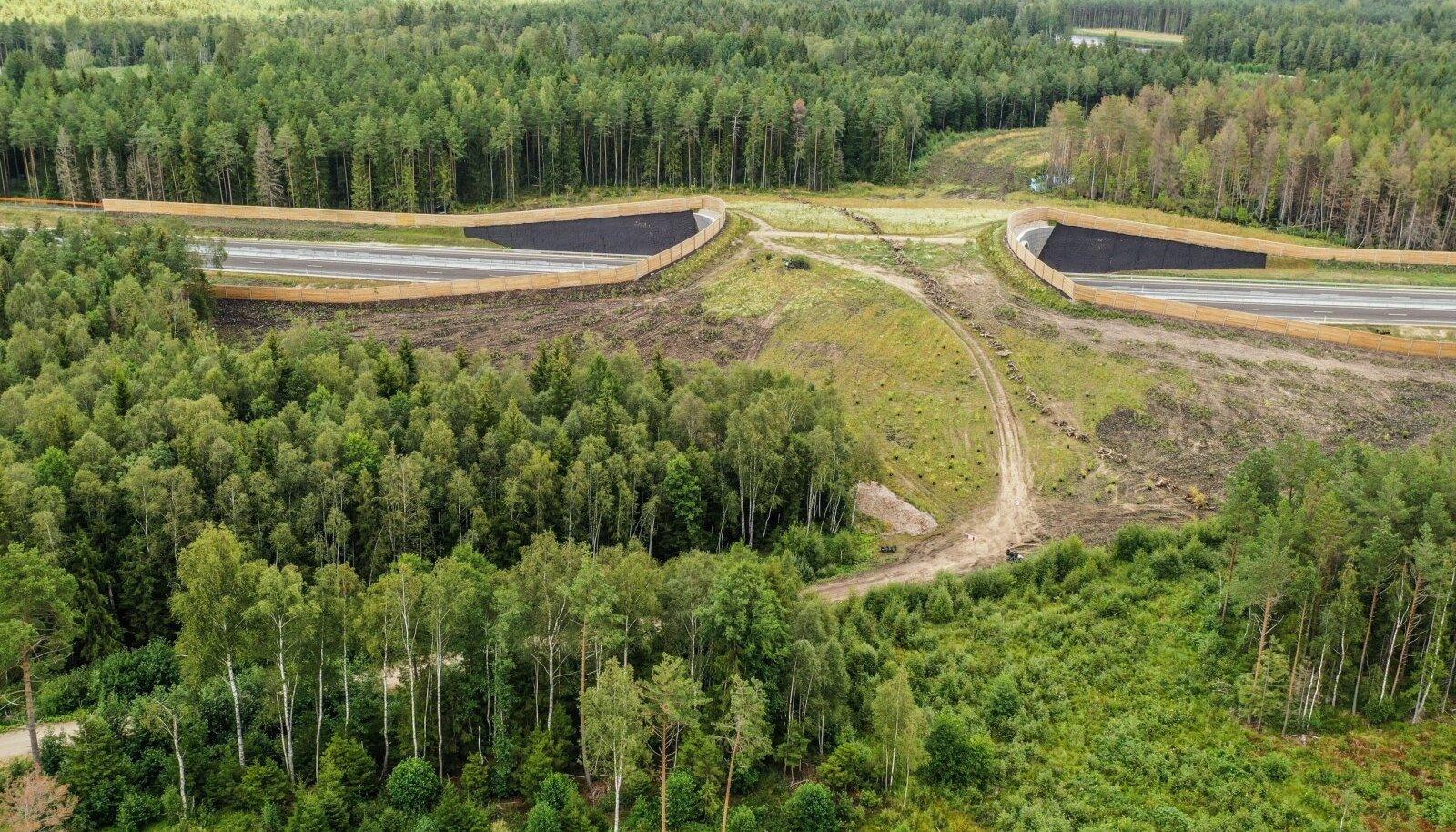 Seni on Natura keskkonnamõju hindamist tehtud suurematele projektidele, näiteks juhtudel, kui tee-ehitus satub Natura alale.