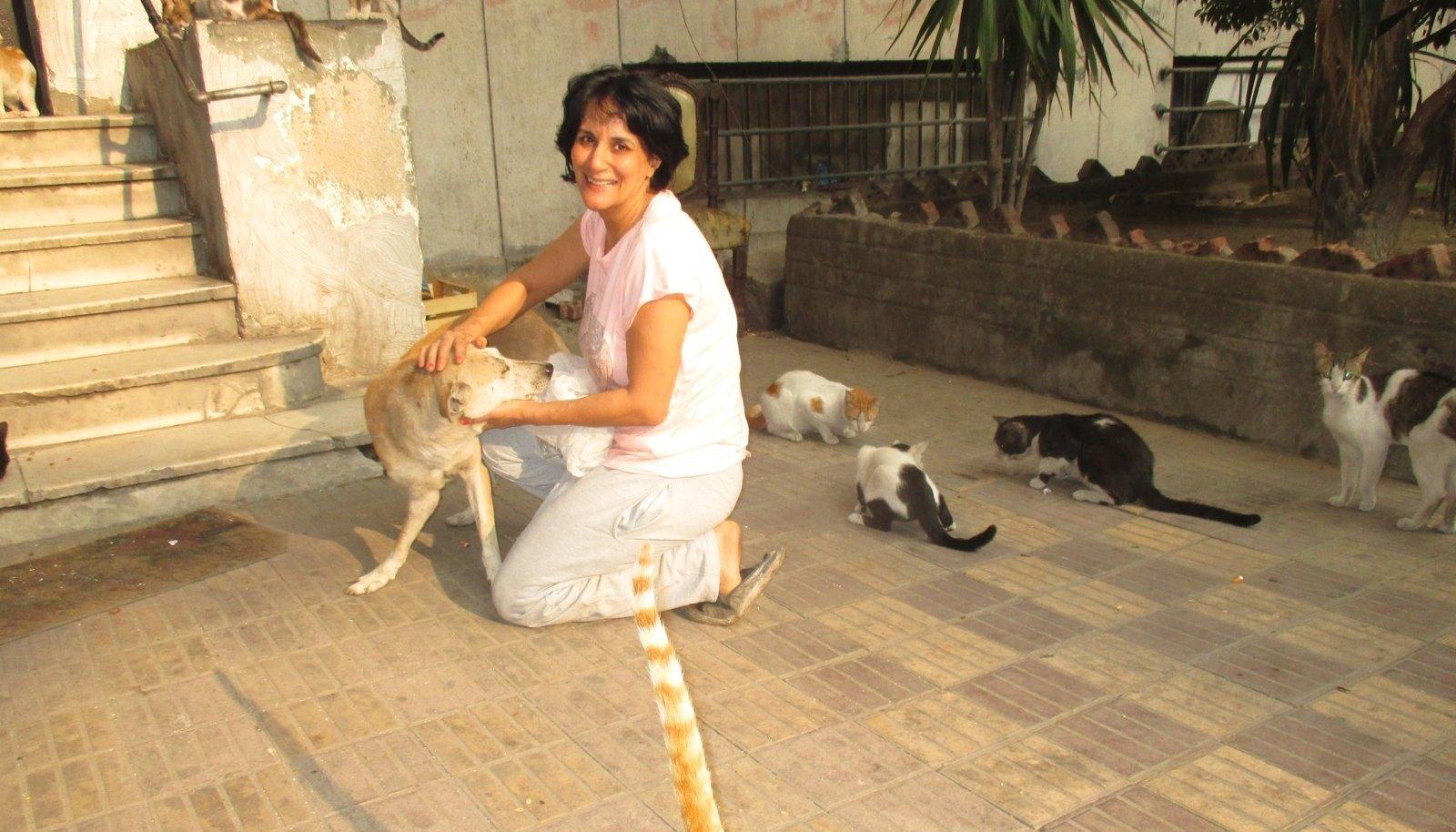 PROUA JEMEN: Hoolitseb iga päev Dokki linnajaos mitmekümne kiisu eest.