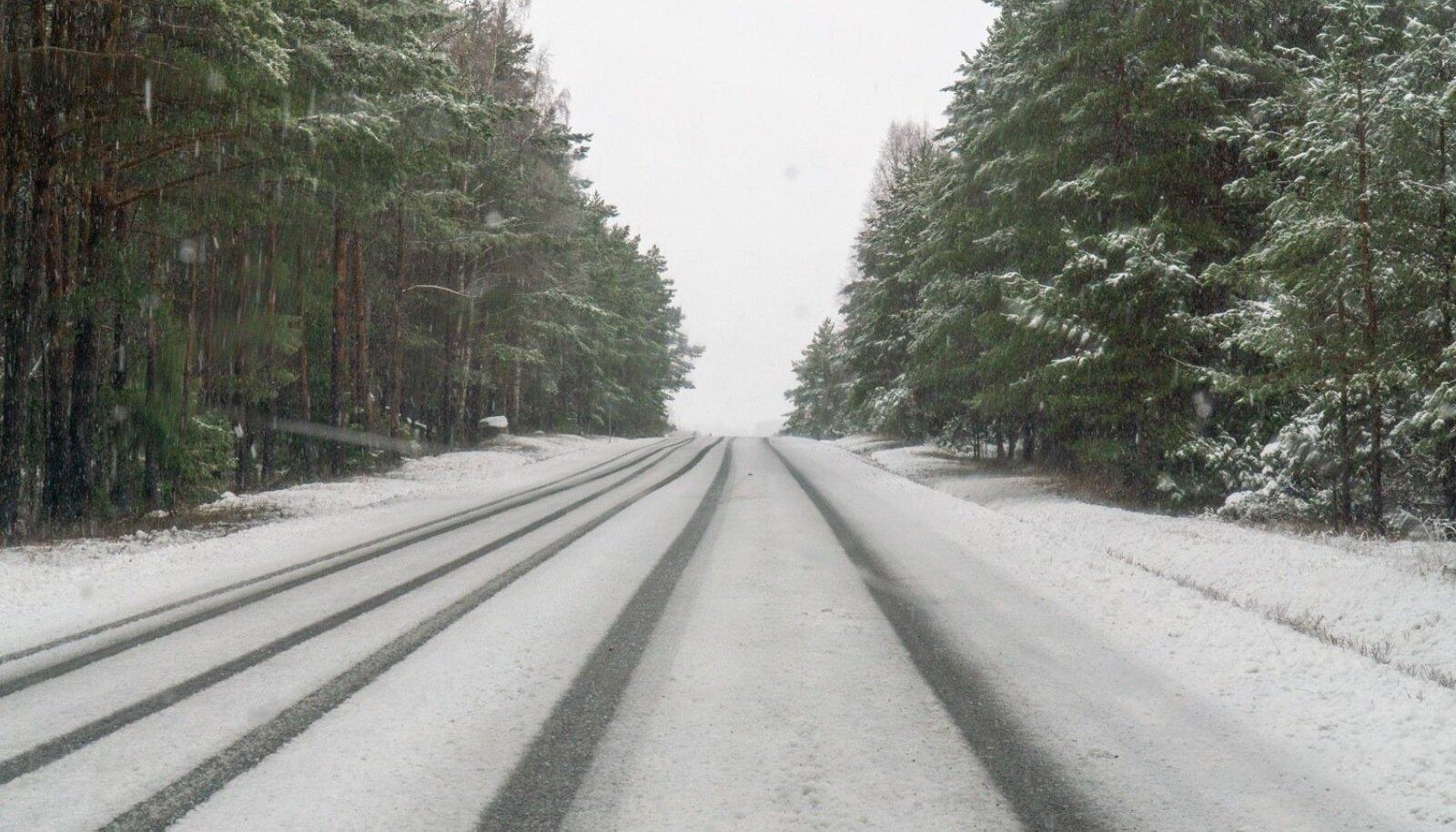 Saaremaal sadas päeva eest lobjakat, sõiduteed põhja Saaremaal, lääne saaremaal olid kaetud paksu lumesodiga. Kuressaares sadas vihma, maapiirkonnad said paksu lörtisaju osaliseks. Puud murdusid märja lumekoorma all