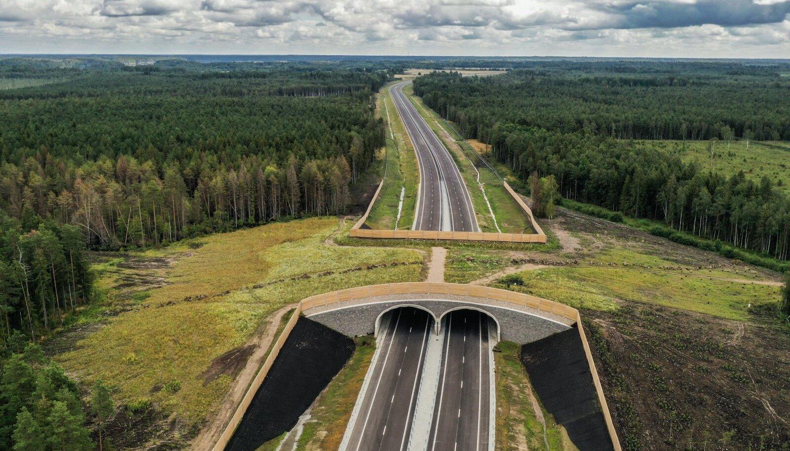 Rõõsa ökodukt Kose-Võõbu teelõigul Tallinna-Tartu maanteel.