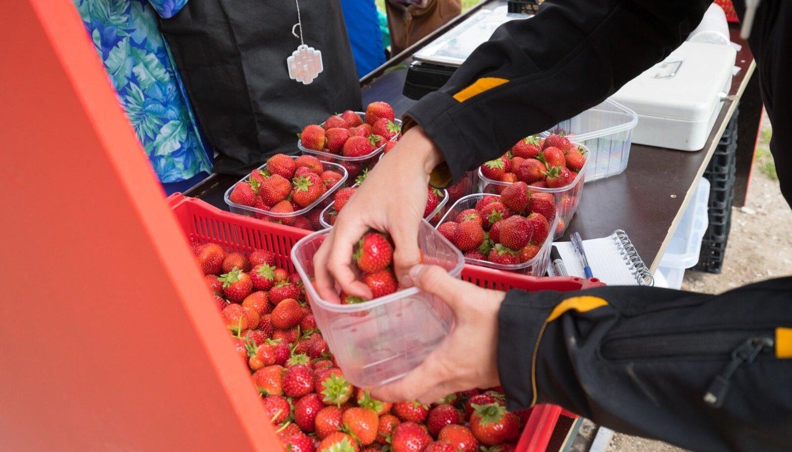 Maasikamüük keskturul.
